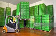 Soğuk Zincir Lojistiğinde Gıda Kayıplarının Azaltılması